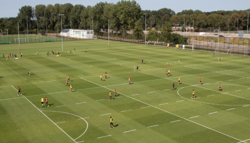 Eredivisie Turf Transition